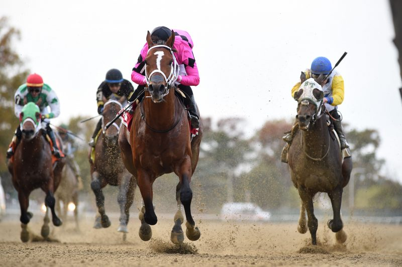 MAXIMUM SECURITY REAPARECE A LO GRANDE EN EL BOLD RULER HANDICAP