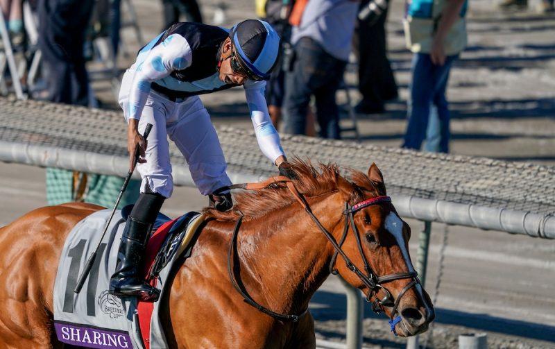 Chris Crestik/Eclipse Sportswire/Breeders' Cup/CSM