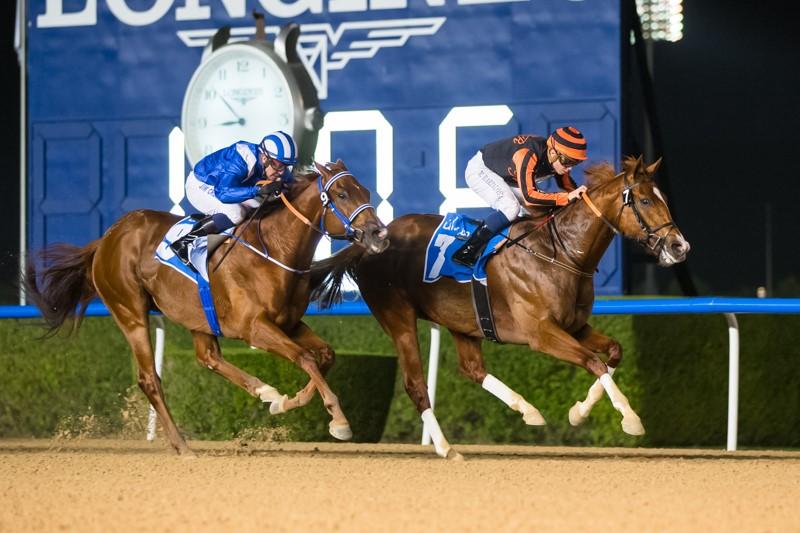 Foto Meydan Racecourse