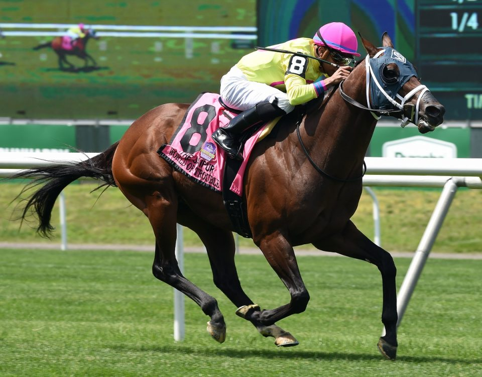 Coglianese Photo