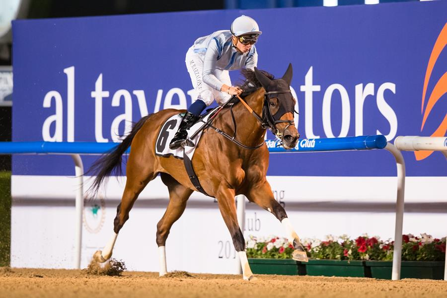 DOWN ON DA BAYOU - Foto Meydan Racing Club