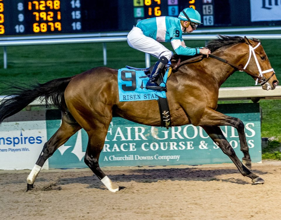 Mr. Monomoy - Risen Star #1 - Fair Grounds - Hodges Photography 1