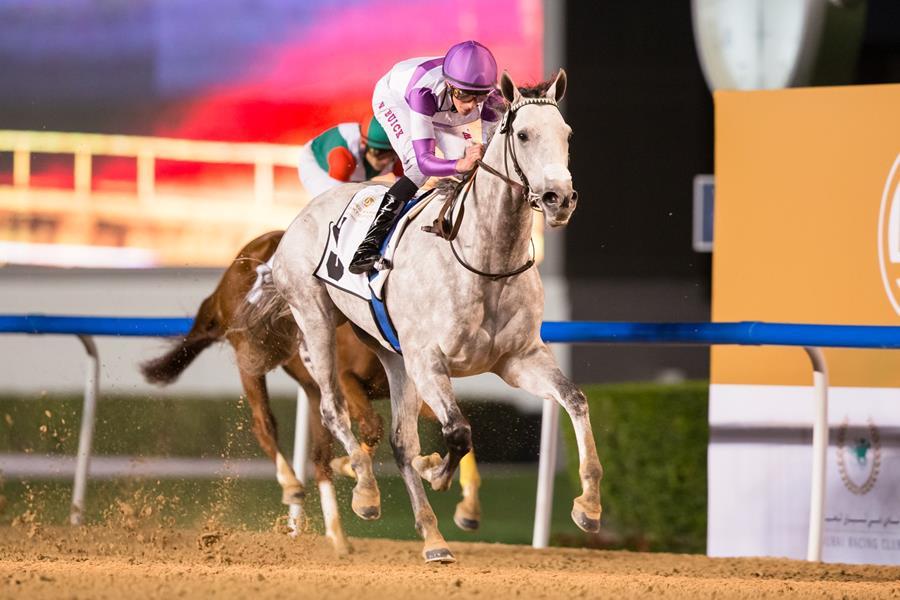 Parsimony - Credit Dubai Racing Club - Erika Rasmussen