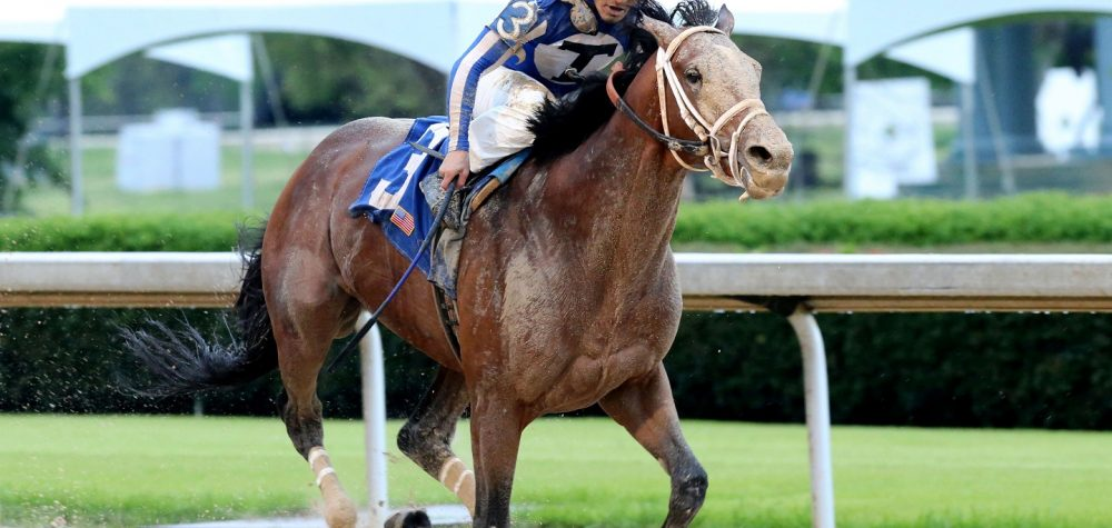 MR BIG NEWS - Oaklawn Stakes - Coady Photo - Oaklawn Media