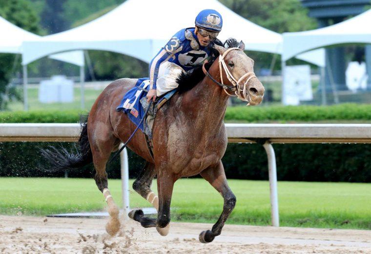 MR BIG NEWS - Oaklawn Stakes - Coady Photo - Oaklawn Media