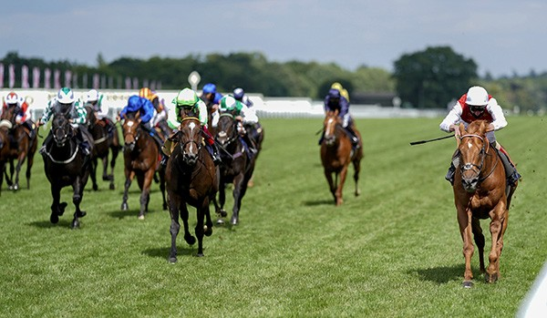 Adam Kirby and Golden Horde winning The Commonwealth Cup Royal Ascot 19.6.20 Photo Healy Racing.