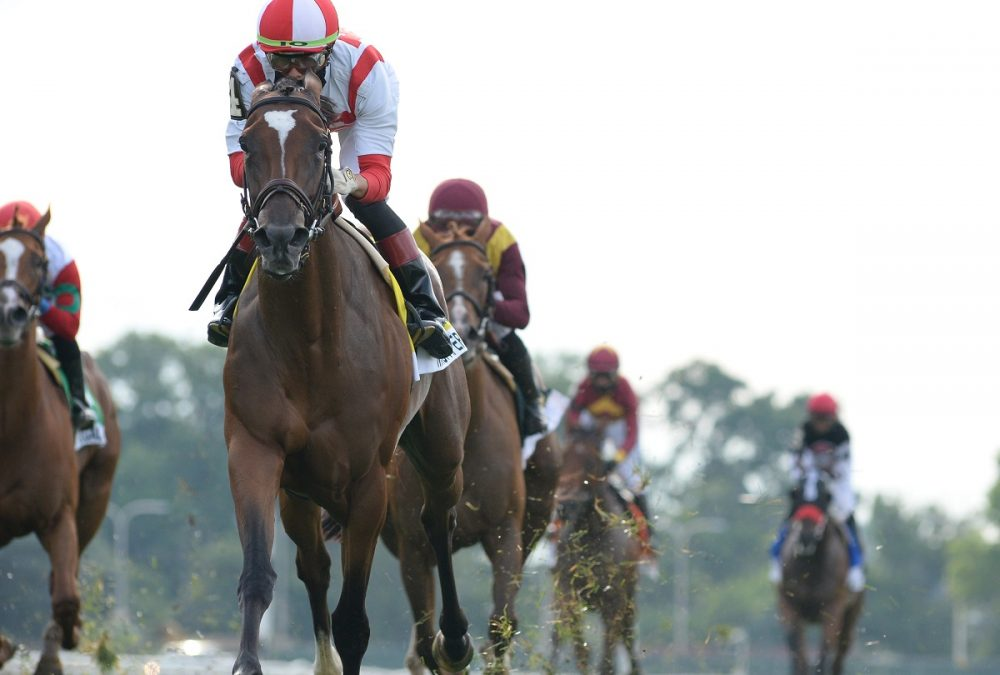 Newspaperofrecord the Just a Game G1 - Coglianese Photo
