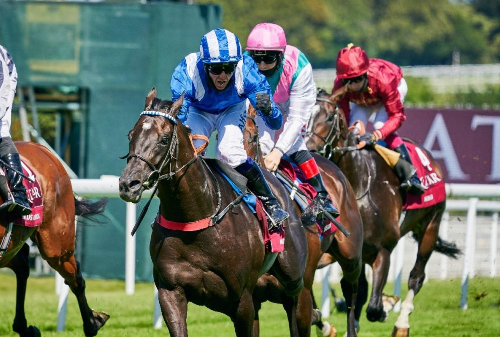 Mohaather - 2020 Sussex Stakes - Racenews Photo