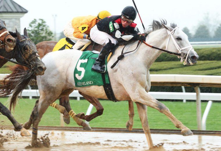 SILVER DUST - Ben Ali Stakes G3 - Coady Photo