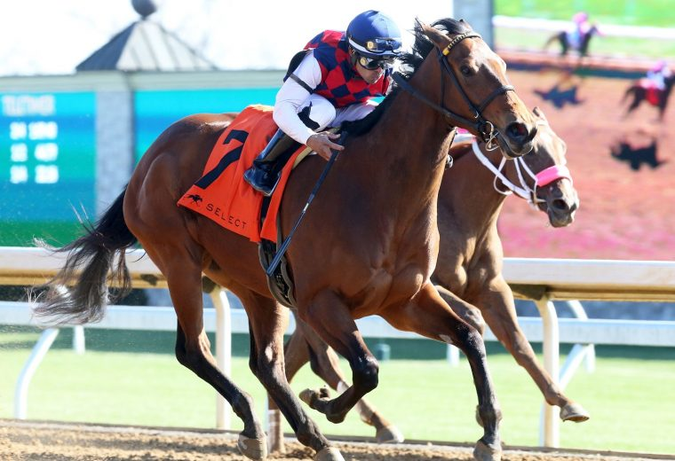 TWENTY CARAT - The Beaumont Presented by Keeneland Select - Coady Photo