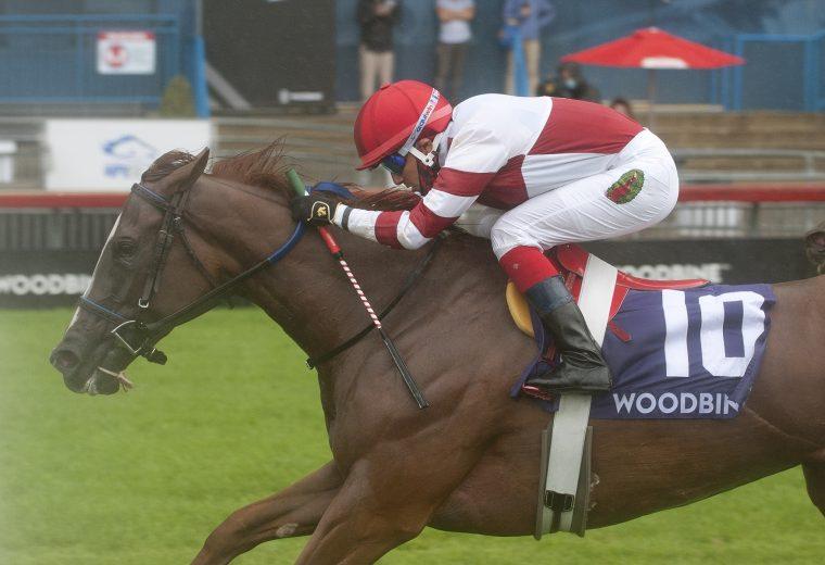 Nassau Stakes - Jolie Olimpica (BRZ) - Michael Burns Photo
