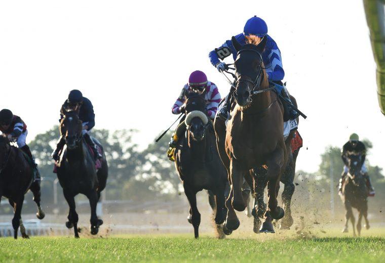 Yibir the Jockey Club Derby - Coglianese Photo