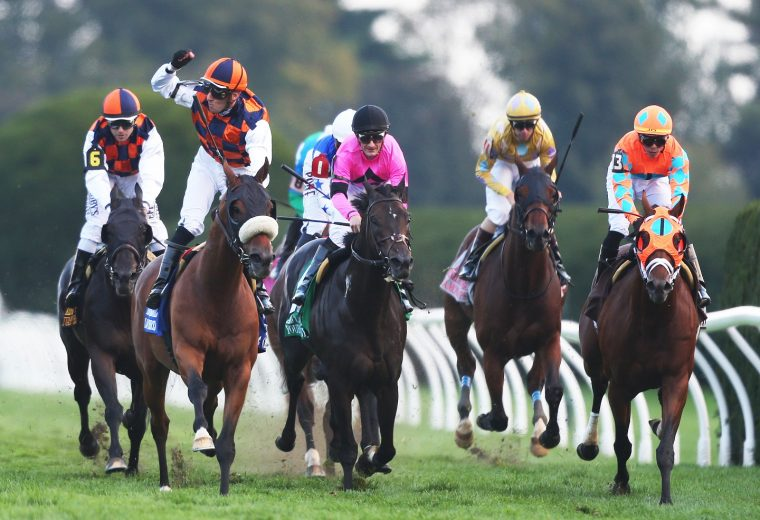 IN LOVE - The Keeneland Turf Mile - 36th Running G1 - Coady Photo